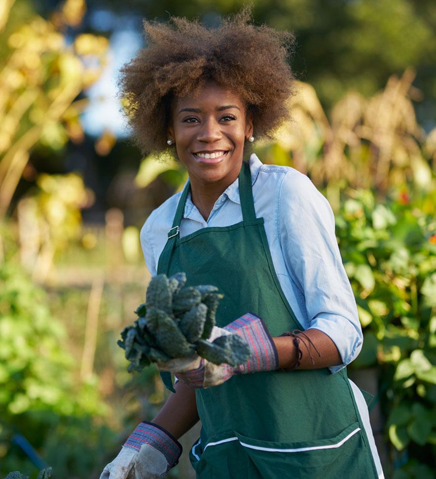 avantgarden-hochbeet-bepflanzen